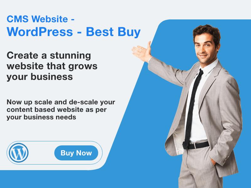 CMS Website - WordPress - Best Buy
