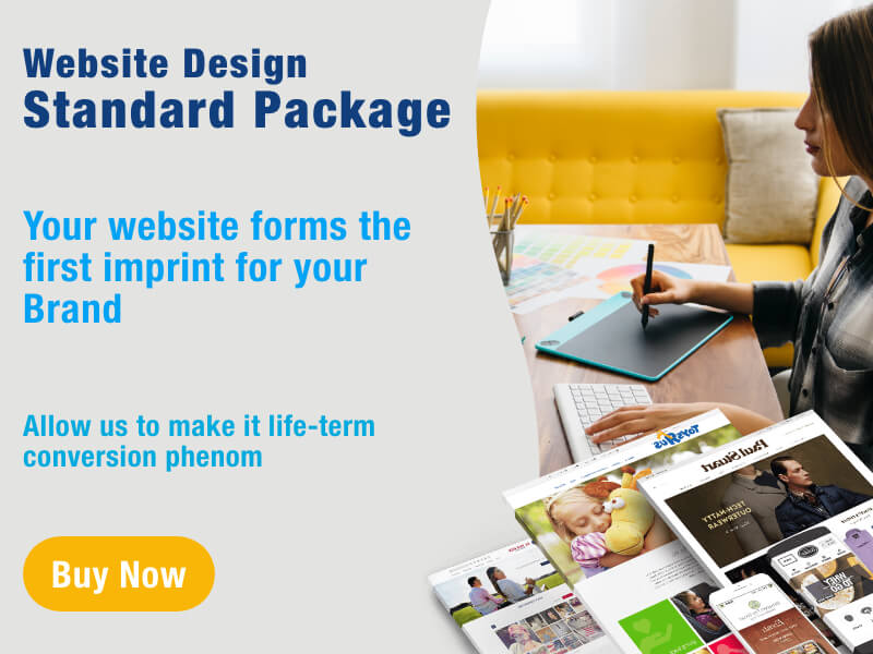 Affordable Website Design Standard Package