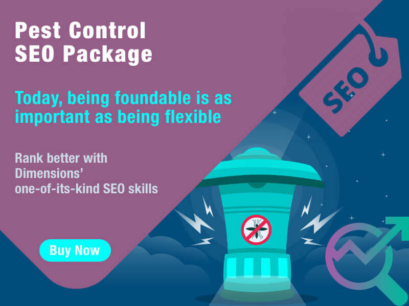 Expert SEO Services For Pest Control