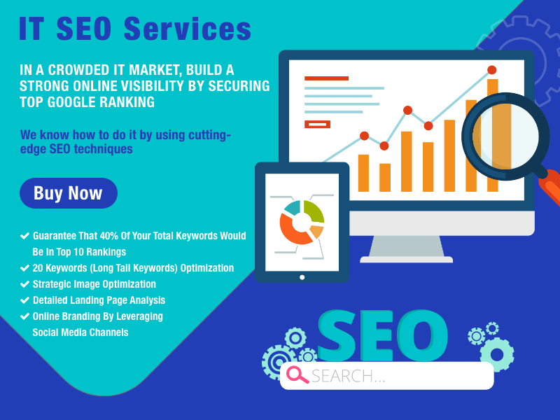 Expert SEO Services For B2B