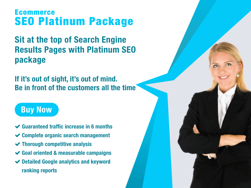 ECommerce SEO Packages Platinum