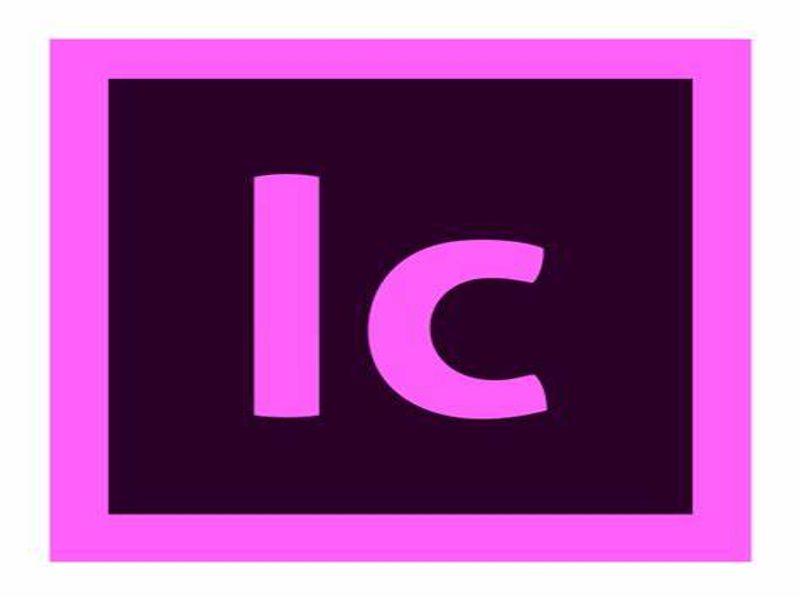 InCopy for enterprise - Commercial